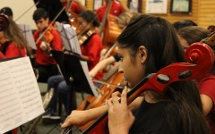 Photo Gallery: Barnes and Noble Bookfair