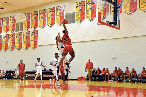 Basketball soars into district playoffs
