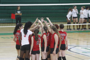 Photo Gallery: Volleyball