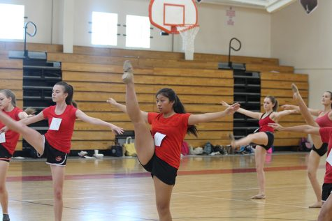 The Dancerettes perform at annual showcase