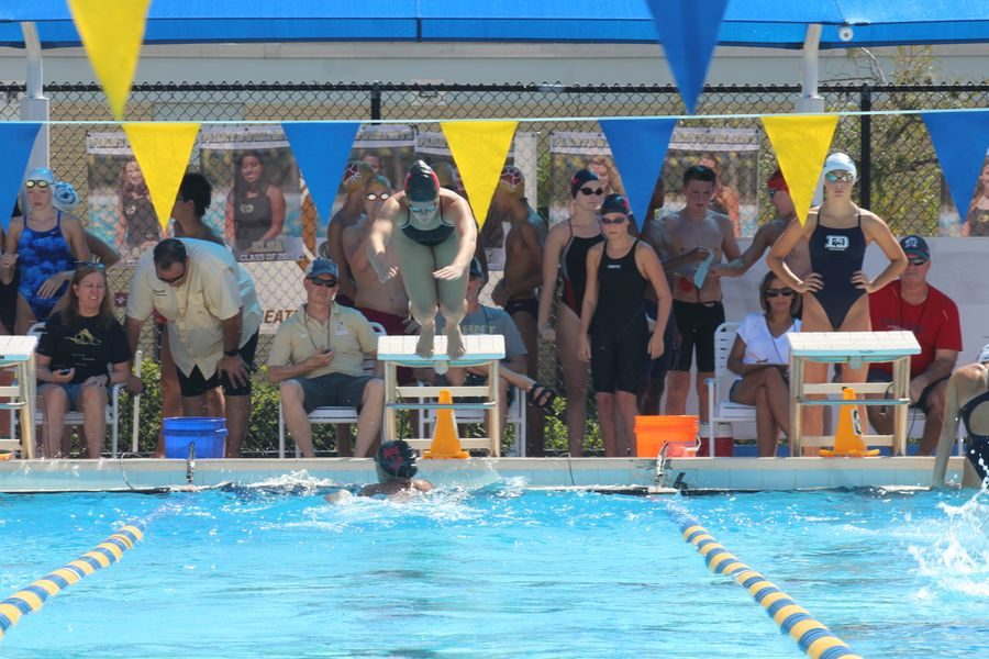Annberlee Hothem dives into the water during the relay