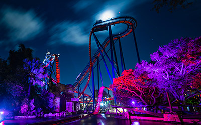 Riders on SheiKra can get a quick birds eye view of the spooky events going on at Howl-O-Scream. Photo via Busch Gardens